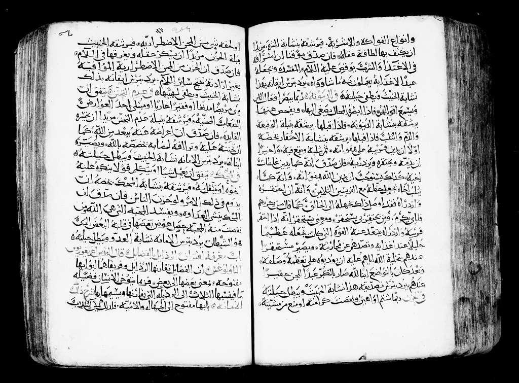 Arabic Manuscripts 483. Spiritual Paradise and Mimars