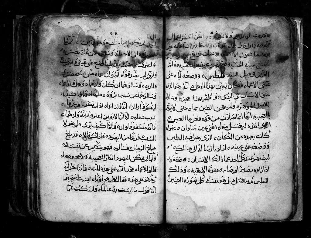Arabic 30.Evangelion. 1405 A.D. 239 f. Pa. 30 ft