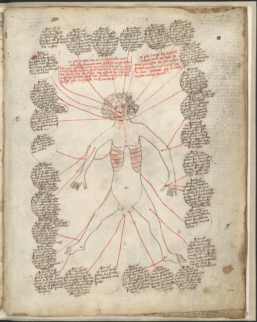 [Encyclopedic manuscript containing allegorical and medical drawings].