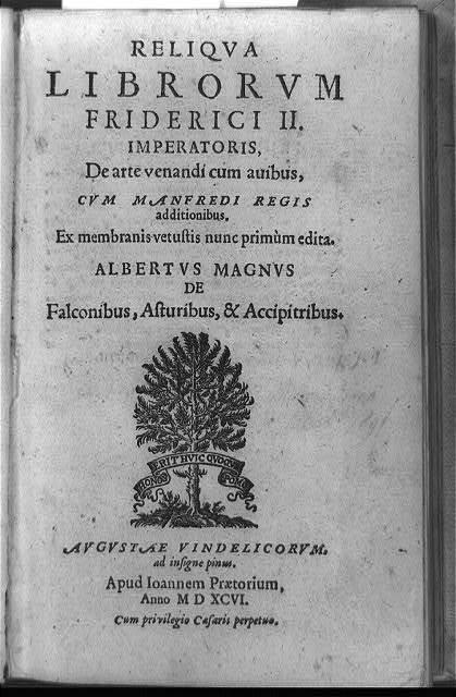 """[Title page of De arte venandi cum avibus, with pine tree and banner """"Honos erithuic quoqum pomo""""]"""