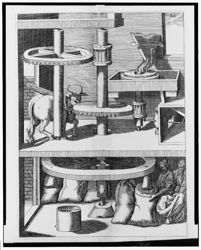 [Ox-powered machine for grinding or milling grain]