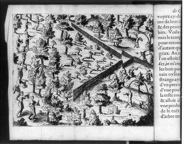 [Bird's-eye view of a Native American deer hunt in New France (Canada), showing Indians driving deer towards fences into narrow enclosure to be killed, and two dead deer hanging from bent trees]