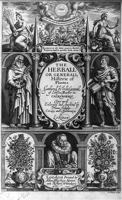 [Illus. title page of The Herball or Generall Historie of Plantes. Gathered by John Gerarde, London, 1636 - shows composite of scenes including figures of Ceres and Pomona, full-length portraits of Theophrastus (d. 287? B.C.) and Pedanius Discordies; also bust portrait (of the author?)]