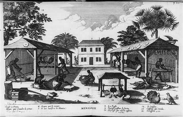 [West Indies: manufacture of manioc or cassava]