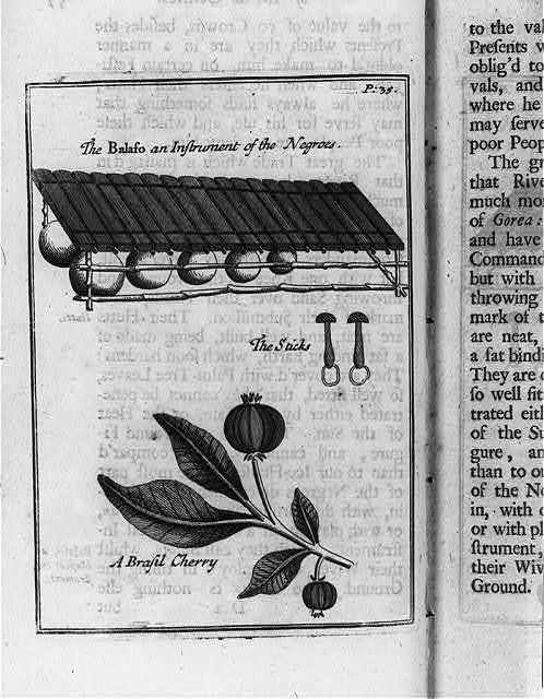 """""""Balaso [xylophone] and instrument of the Negroes; the sticks; a Brazil cherry"""