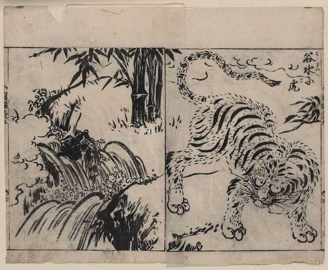 [Tiger near a cataract]