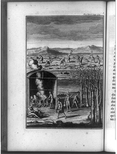 [Native Americans collecting sap and cooking maple syrup in pots, tilling soil into raised humps, and sowing seeds, North America]