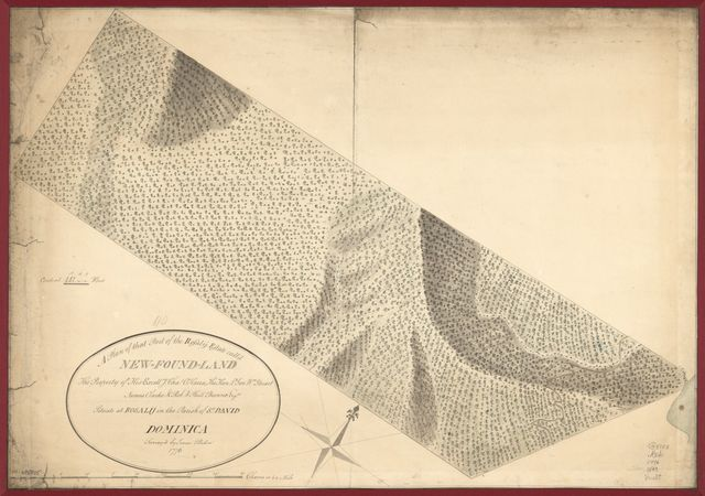 A plan of that part of the Rosalij Estate call'd New-Found-Land, the property of His Excellcy. Chas. O'Harra, the Hon. Lt. Gov. Wm. Stuart, James Clarke & Rob. & Phill. Browne, Esqrs., situate at Rosalij in the parish of St. David, Dominica.