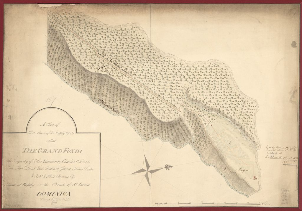 A plan of that part of the Rosalij Estate called the Grand Fonds, the property of His Excellency Charles O'Harra, the Honble. Leiut. Gov. William Stuart, James Clarke & Robt. & Phill. Browne, Esqrs., situate at Rosalij in the parish of St. David, Dominica.
