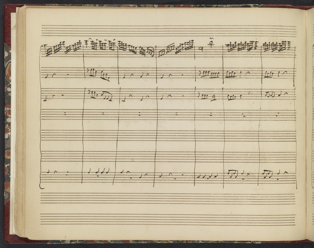 Cefalo e Procri : Cantata a tre voci /