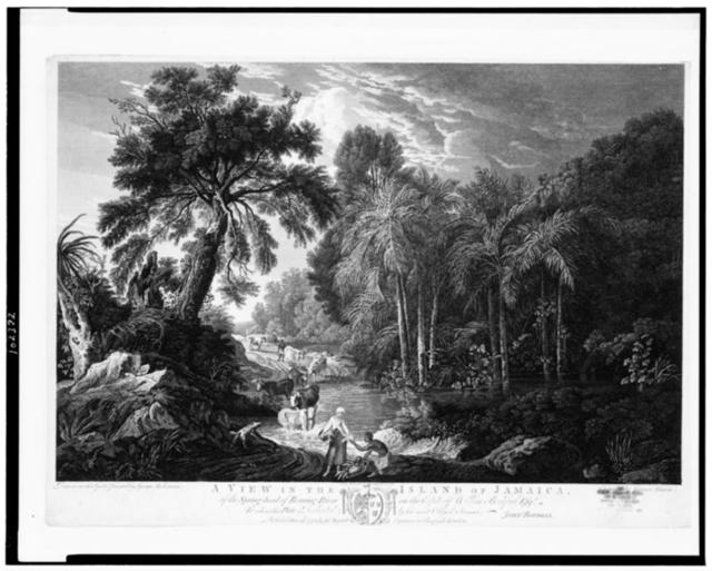 A view in the Island of Jamaica, of the spring-head of Roaring River on the estate of William Beckford esqr. / drawn on the spot, and painted by George Robertson ; engraved by James Mason.