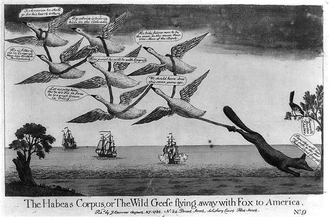The habeas corpus, or The wild geese flying away with Fox to America
