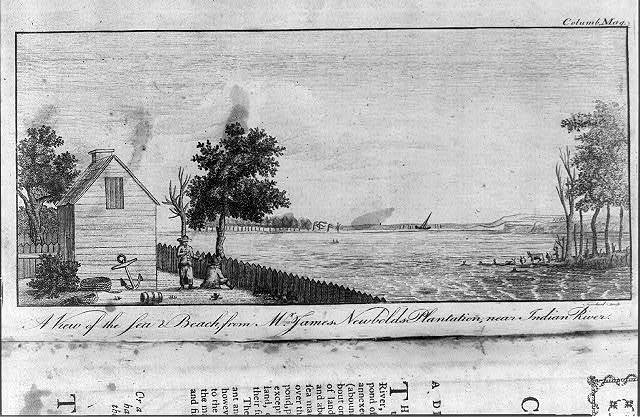 A view of the sea & beach, from Mr. James Newbolds plantation, near Indian River / Trenchard sculp.