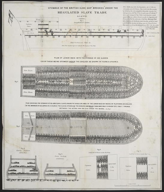 """Stowage of the British slave ship """"Brookes"""" under the regulated slave trade act of 1788. [n. p. n. d.]."""