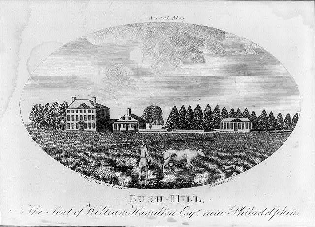 Bush-Hill, the seat of William Hamilton Esqr. near Philadelphia / J. Hoffman del. Philada. ; Tiebout sct.