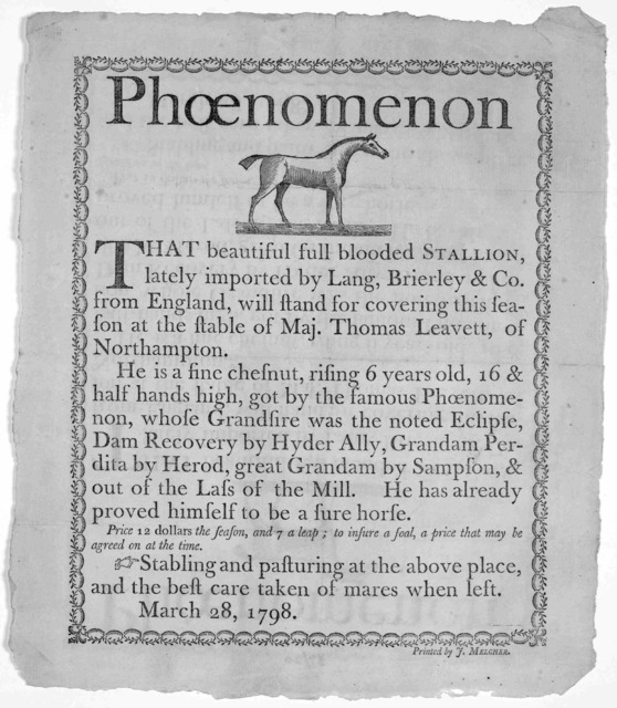 Phoenomenon [Cut] That beautiful full blooded stallion lately imported by Lang, Brierly & Co. from England, will stand for covering this season at the stable of Maj. Thomas Leavett, of Northampton. [Description of the horse] Stabling and pasturi