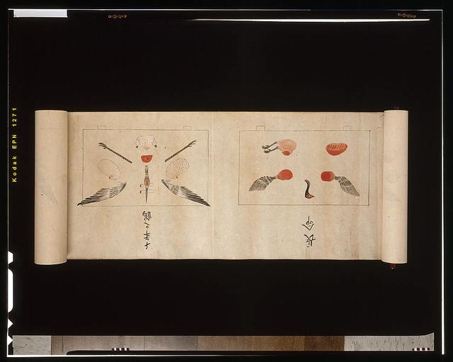 [Ikuma School technique for carving a pheasant]