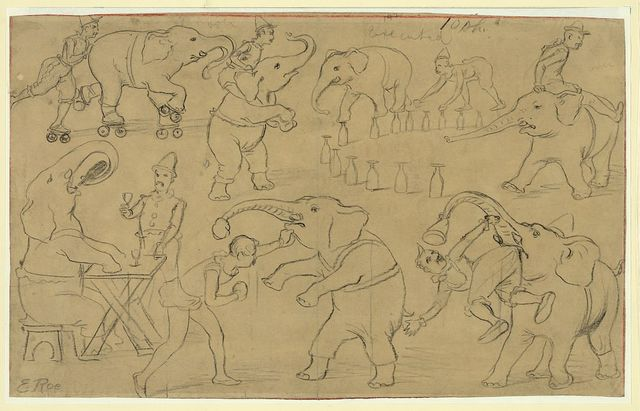 [Circus sketches: acrobats and circus animals]