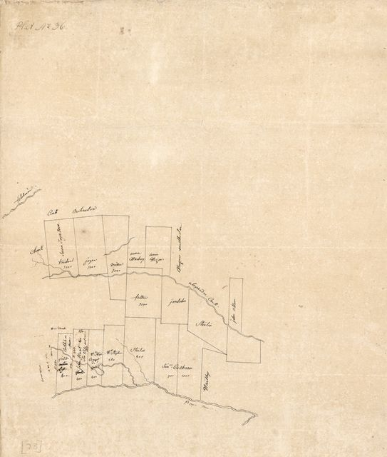 [Map of a portion of Feliciana District, Spanish West Florida, along Alexander Creek and Bayou Tasa].