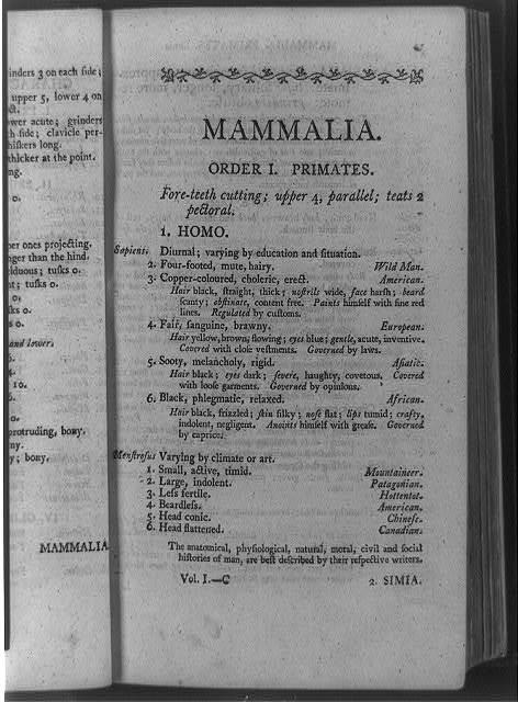 Mammalia, order 1, primates ...
