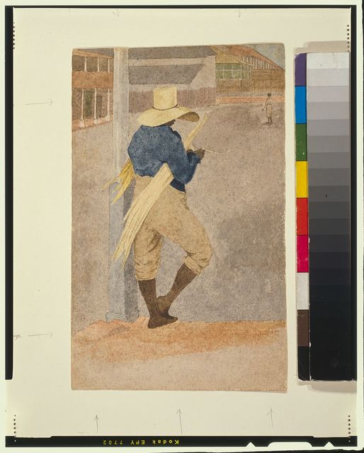 [Negro man in straw hat, standing, stripping cane]