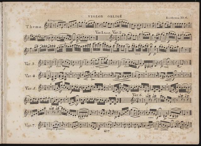 XII Variationen uber Ein Madchen oder Weibchen op. 66