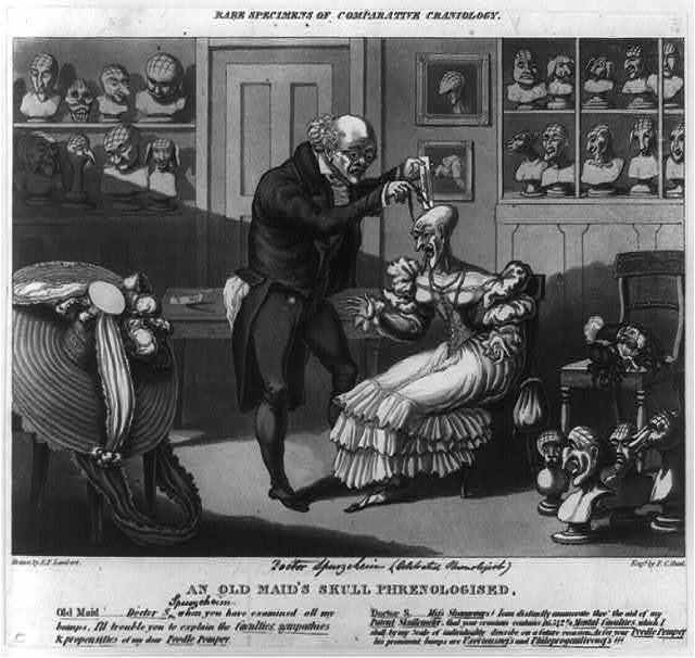 Rare specimens of comparative craniology: an old maid's skull phrenologised.