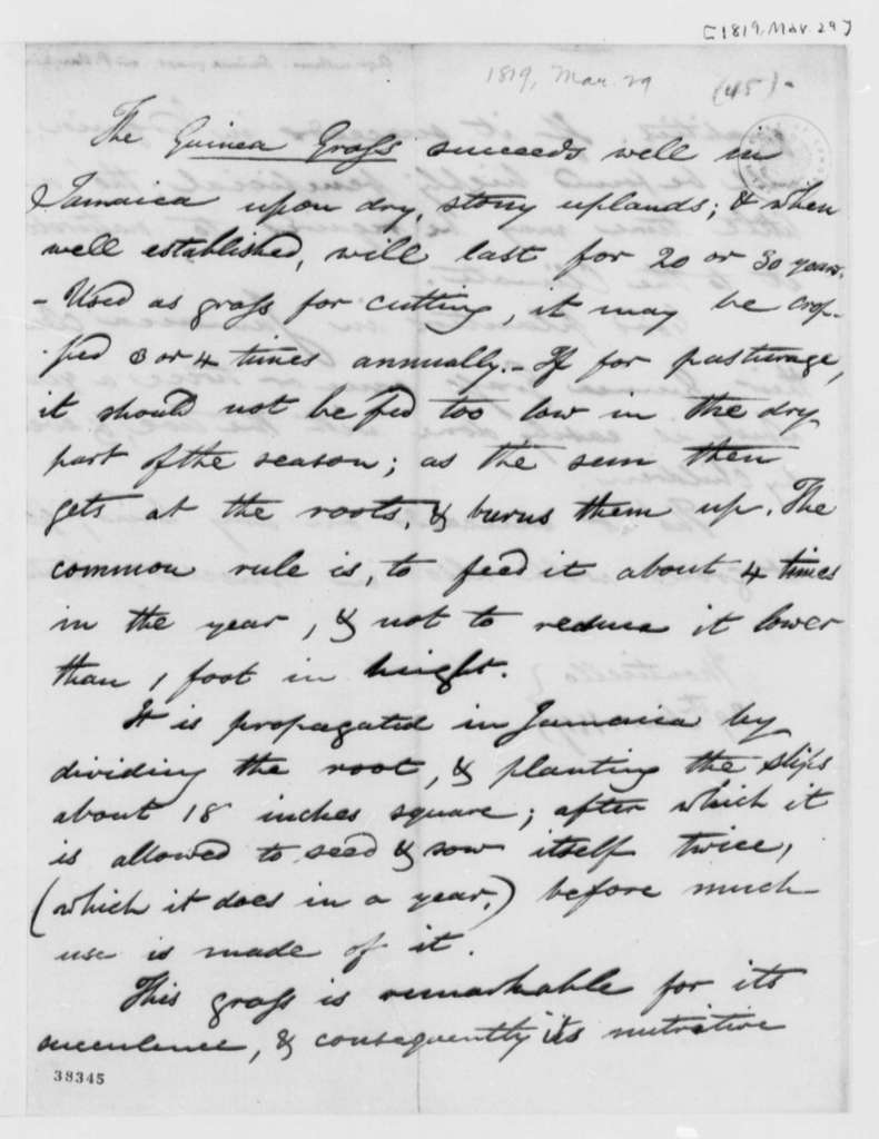 Petty Vaughan, March 29, 1819, Notes on Guinea Grass