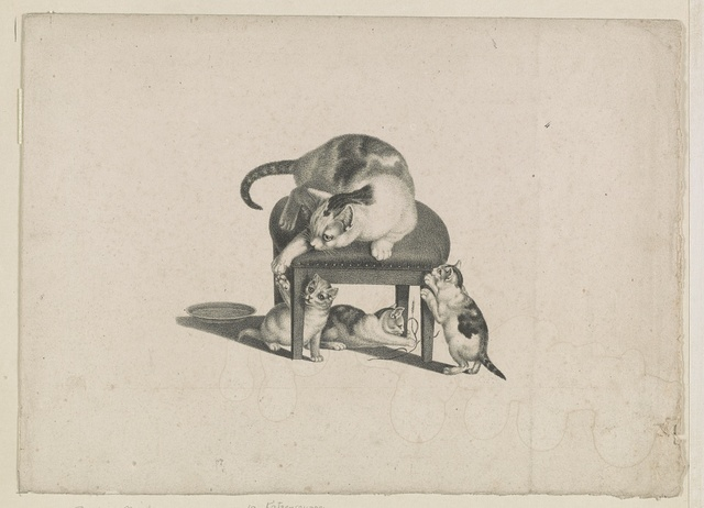 [Domestic cat on a stool playing with three kittens] / C.F.