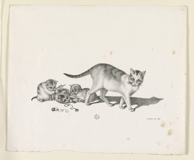 [Domestic cat with three kittens, playing] / Brodtmann nach Mind.