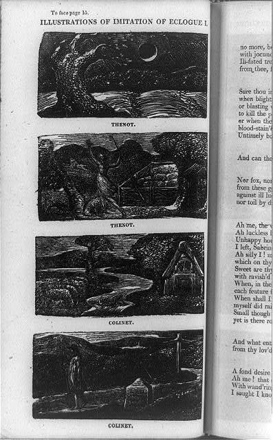 [Four wood engravings illustrating Ambrose Phillips' Imitation of eclogue]
