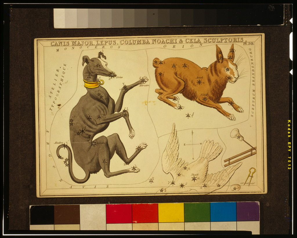 Canis Major, Lepus, Columba Noachi & Cela Sculptoris / Sidy. Hall, sculpt.