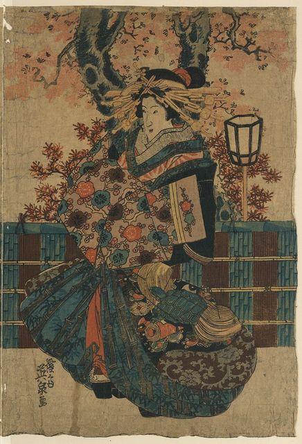 Nakano chō no sakura