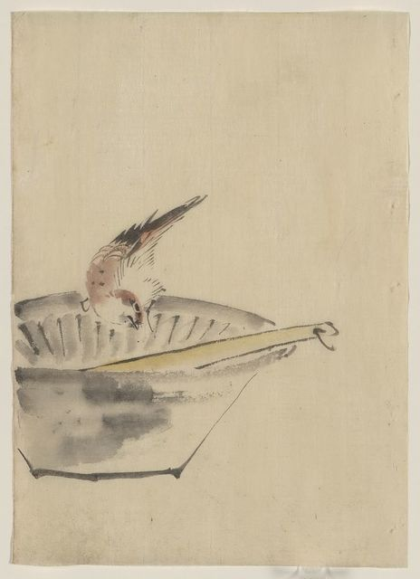 [A bird perched on the edge of a bowl, with head cocked, looking at a utensil in the bowl]