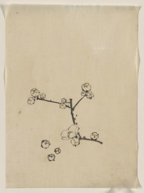 [A tree branch with blossoms]