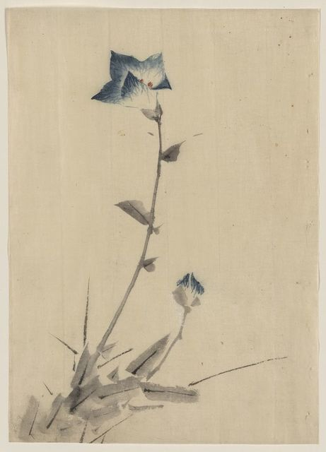 [Blue flower blossom and bud at the end of a stalk]