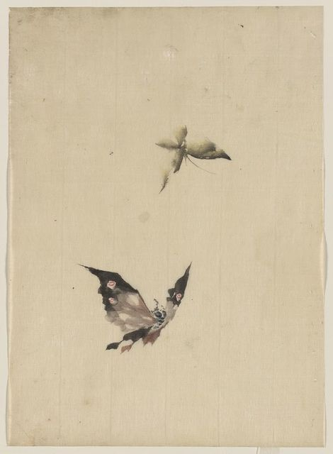 [Butterfly and moth]