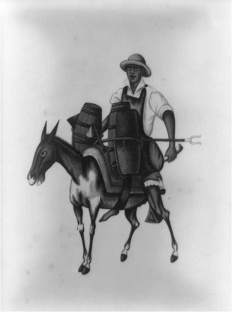 [Man riding a burro carrying barrels, Peru]