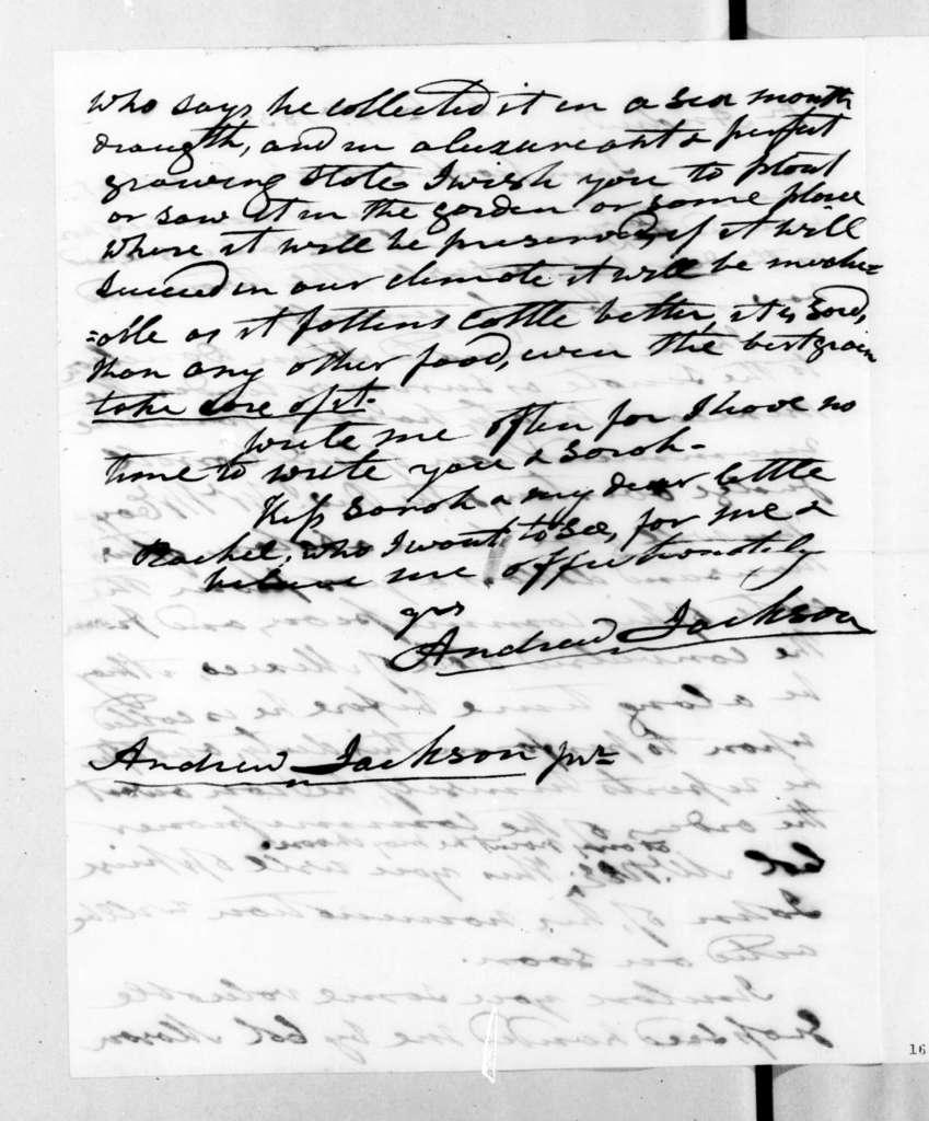 Andrew Jackson to Andrew Jackson, Jr., October 19, 1832