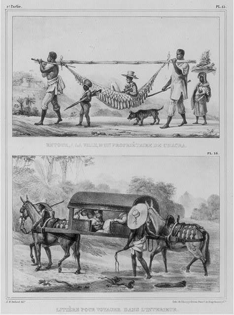 [2 Blacks carrying gentleman in hammock attached to pole; also 2 mules carrying man in sedan chair]