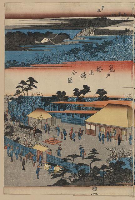 Kameido umeyashiki zenzu