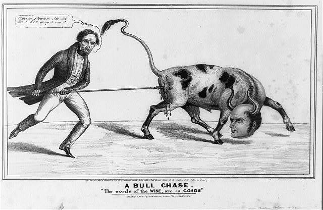 A bull chase. The words of the wise, are as goads
