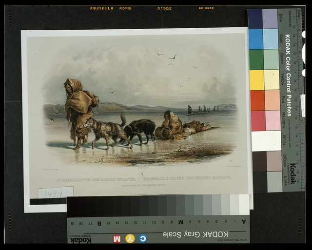 Dog sledges of the Mandan Indians / ch. Bodmer pinx. ad nat. ; René Rollet sc.
