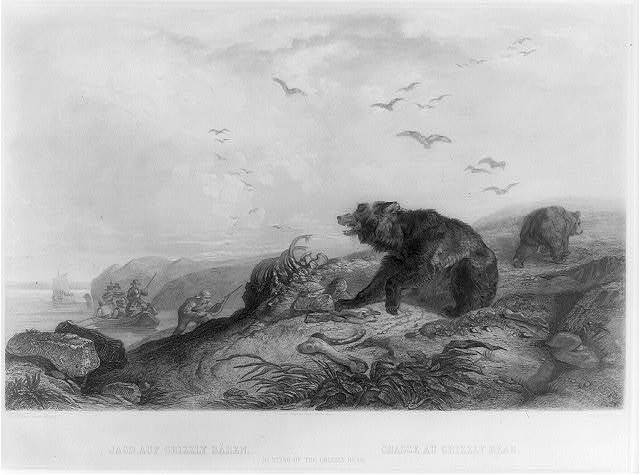 Jagd auf Grizzly Bären Chasse au grizzly bear = Hunting of the grizzly bear / / Ch. Bodmer, pinx ad nat. ; Lucas Weber, sc.