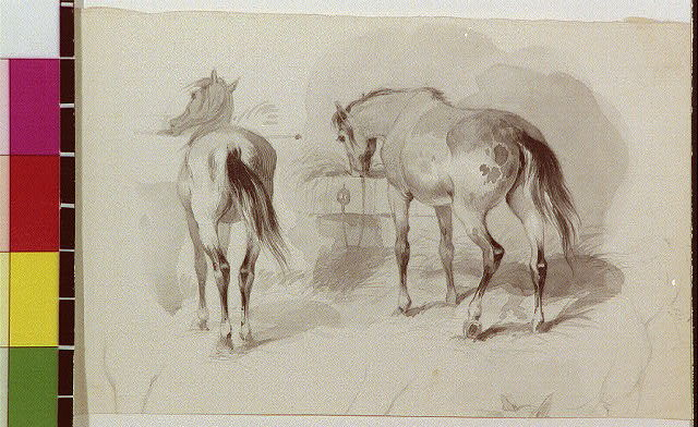[Two horses]