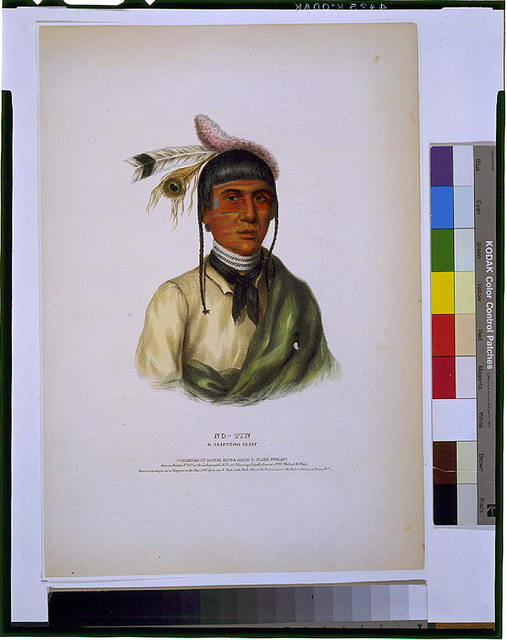 No-Tin, a Chippewa chief / drawn, printed & col'd. at the Lithographic & Print Colouring Establishment No. 94 Walnut St., Phila.
