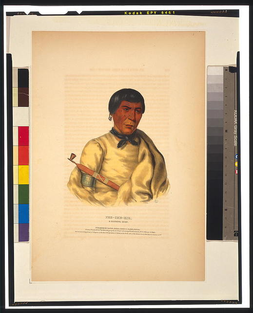 Pee-Che-Kir, a Chippewa chief / H.D. ; drawn, printed & coloured at the Lithographic & Print Colouring Establishment.