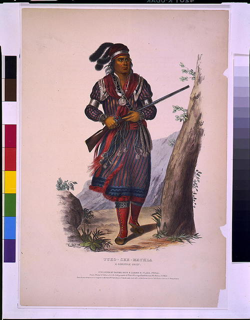 Tuko-See-Mathla, a Seminole chief / drawn, printed & coloured at the Lithographic & Print Colouring Establishment, Phila.