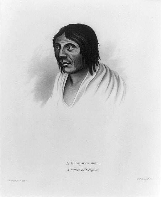 A Kalapuya man - a native of Oregon / drawn by A.T. Agate ; W.H. Dougal sc.