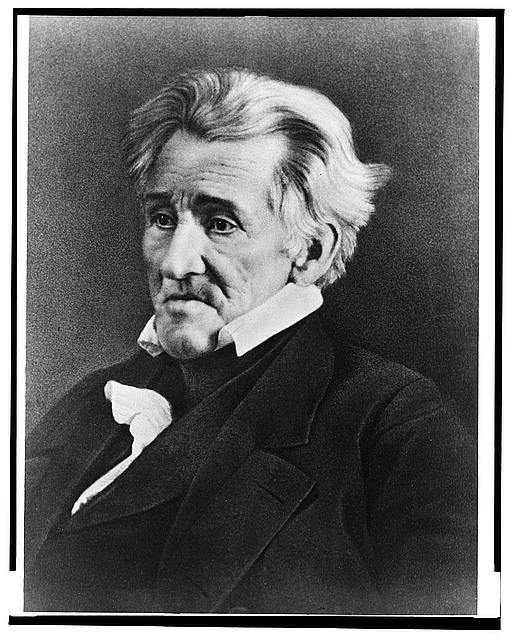 [Andrew Jackson, half length portrait, seated, facing left]